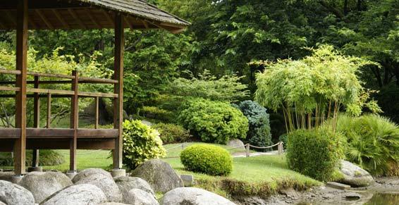 jardins parcs paysagiste dijon collet paysage. Black Bedroom Furniture Sets. Home Design Ideas